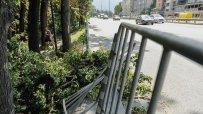 паднало-дърво-блокира-столичния-булевард-никола-й-вапцаров-47096.jpg