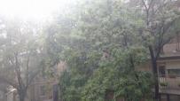 проливен-дъжд-придружен-с-гръмотевици-и-градушка-събуди-столичани-48066.jpg