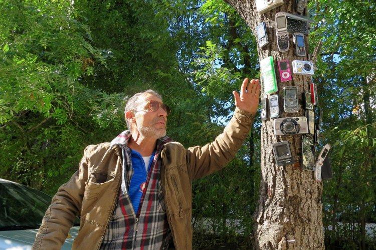 варненски-клошар-превърна-сухо-дърво-в-странна-арт-инсталация-49907.jpg