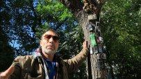 варненски-клошар-превърна-сухо-дърво-в-странна-арт-инсталация-49910.jpg