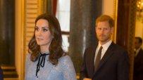 вижте-бременната-херцогиня-катрин-49900.jpg