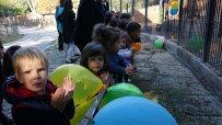 малкият-принц-от-варненския-зоокът-празнува-рожден-ден-50076.jpg