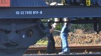 21-годишна-жена-е-паднала-под-товарен-влак-в-бургас-50803.jpg
