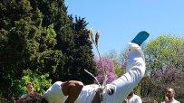 демонстрации-по-капоейра-в-морската-градина-на-варна-57055.jpg
