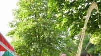 днес-започва-азиатския-фестивал-цветовете-на-традициите-в-борисовата-градина-57539.jpg