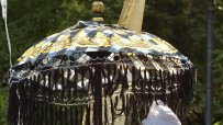 днес-започва-азиатския-фестивал-цветовете-на-традициите-в-борисовата-градина-57542.jpg