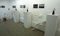 Фамилия авангардни художници направиха изложба във Варна