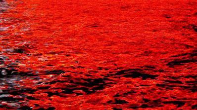 Азовско море стана кърваво червено