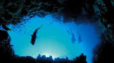 Австралия обяви океана за защитена зона