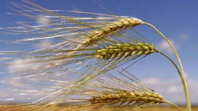 България и Германия ще си сътрудничат в областта на земеделието