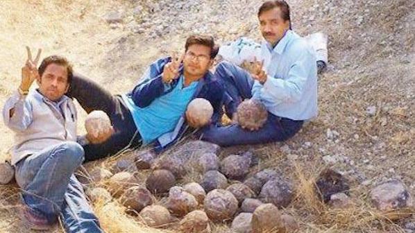 Индийци продават яйца на динозаври за по 9 долара