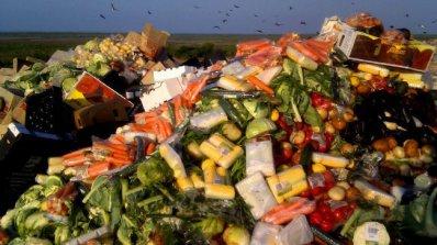 Всяка година по света се изхвърля над 1 млрд. тона храна