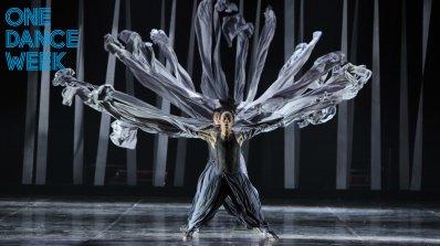 17 спектакъла от 7 държави на седмото издание на ONE DANCE WEEK