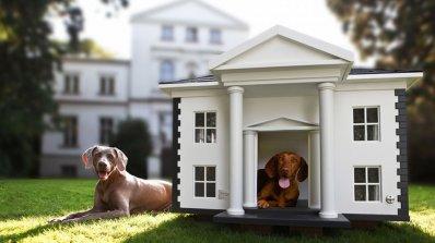 Хотели предлагат хайвер, иконом и спа за кучетата на гостите си