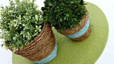 Цвете за всяка стая в дома ви