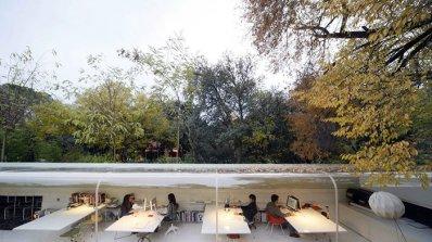 Креативен офис сред природата