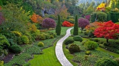 Идеи за градината - помислете за озеленяване