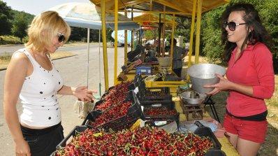 Брюксел готви помощи за череши и за други летни плодове