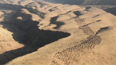 Тайнствените дупки в долината Писко