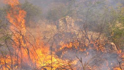 5 часа гасят горящо сметище в Перник
