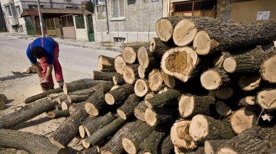 Дървата за огрев на половин цена