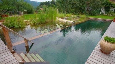 Истински басейн в задния двор