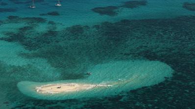 Учени откриха огромен риф зад Големия бариерен риф