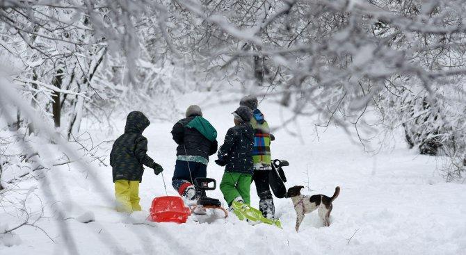 Монтана ще има ледена пързалка