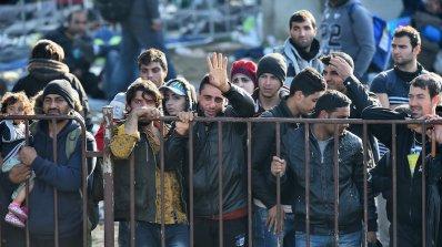 77 000 мигранти достигнали Германия през територията на Австрия за година