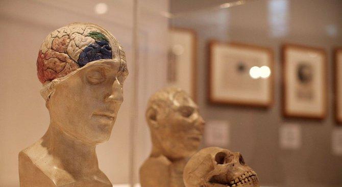 Учени: Хора, дарявайте мозъци!
