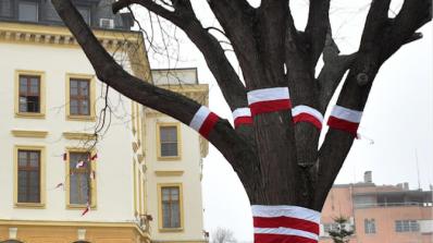 Дърво се превърна в огромна мартеница в Сливен (снимки)
