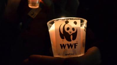 """Рекордните 184 страни се включиха в """"Часът на Земята"""""""