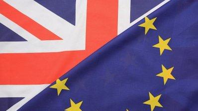 Привърженичка и противничка на Брекзит се помляха от бой в Англия