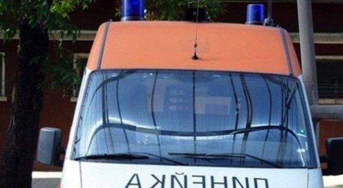 Безстопанствен кон предизвика катастрофа на линейка в Кюстендил