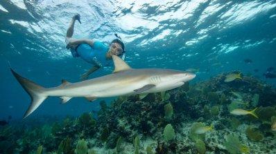Нина Добрев снима филм за акули