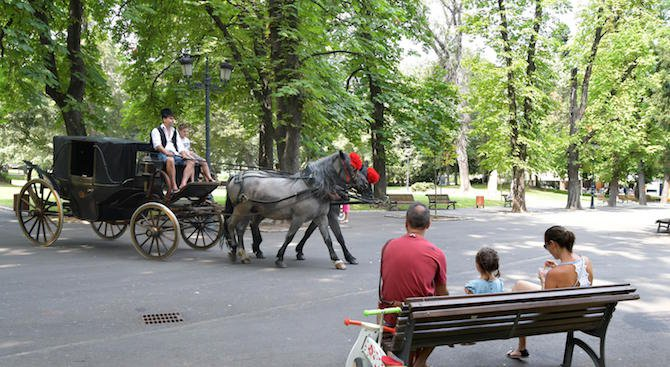 Столична община готви грандиозна промяна на Борисовата градина