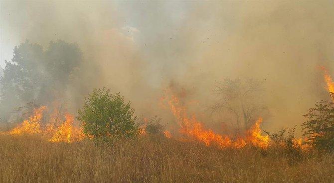 Пожарът над Кресненското дефиле обхвана 6000 декара гора, обстановката се усложнява