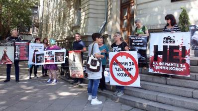 Вегани организират нов протест (видео)