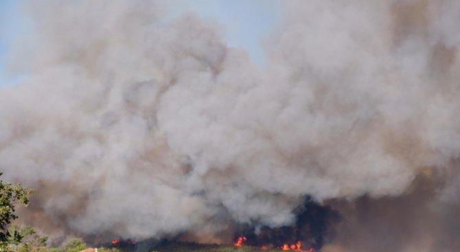 Седем вили и три навеса изгорели при пожара край Хисаря