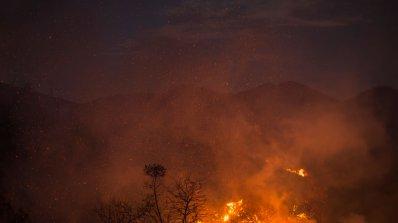 Извънредно положение в Калифорния заради пожари, има загинали (видео)