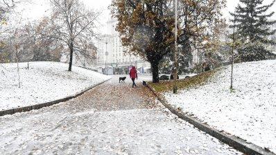 До 20 см сняг се очаква днес в столицата (снимки)