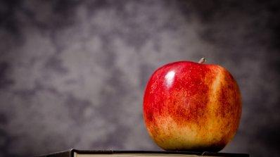 29,73% от учениците в Пазарджишко отсъстват