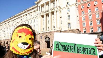 Граждани протестират заради разградските лъвчетата пред Министерски съвет (снимки)