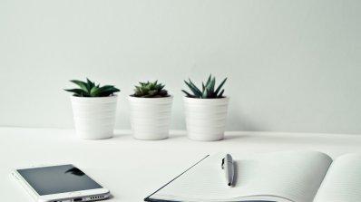 НСИ отчита повишаване на бизнес климата у нас