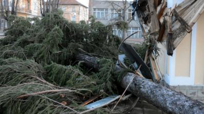 Бедствие: Ураганният вятър преобърна ТИР-ове, без ток са десетки домакинства (обновена+снимки)