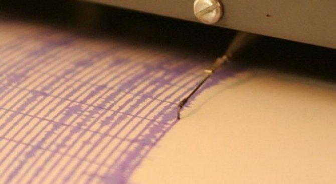 Силно земетресение в Южна Корея (видео)