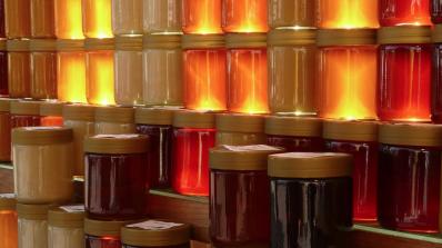 Плевен - столица на българското пчеларство до неделя