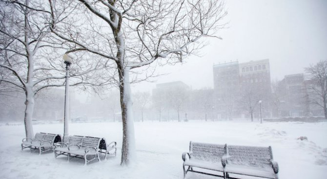 Снежна буря връхлетя Бостън