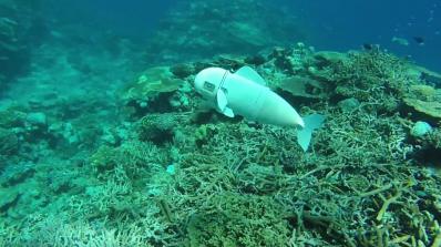 Учени създадоха роботизирана риба за подводни изследвания (видео)