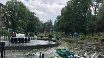 Частично бедствено положение е обявено за Община Плевен (снимка)